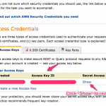 How To Get Amazon Secret Key and Amazon API Key (Access Key ID)
